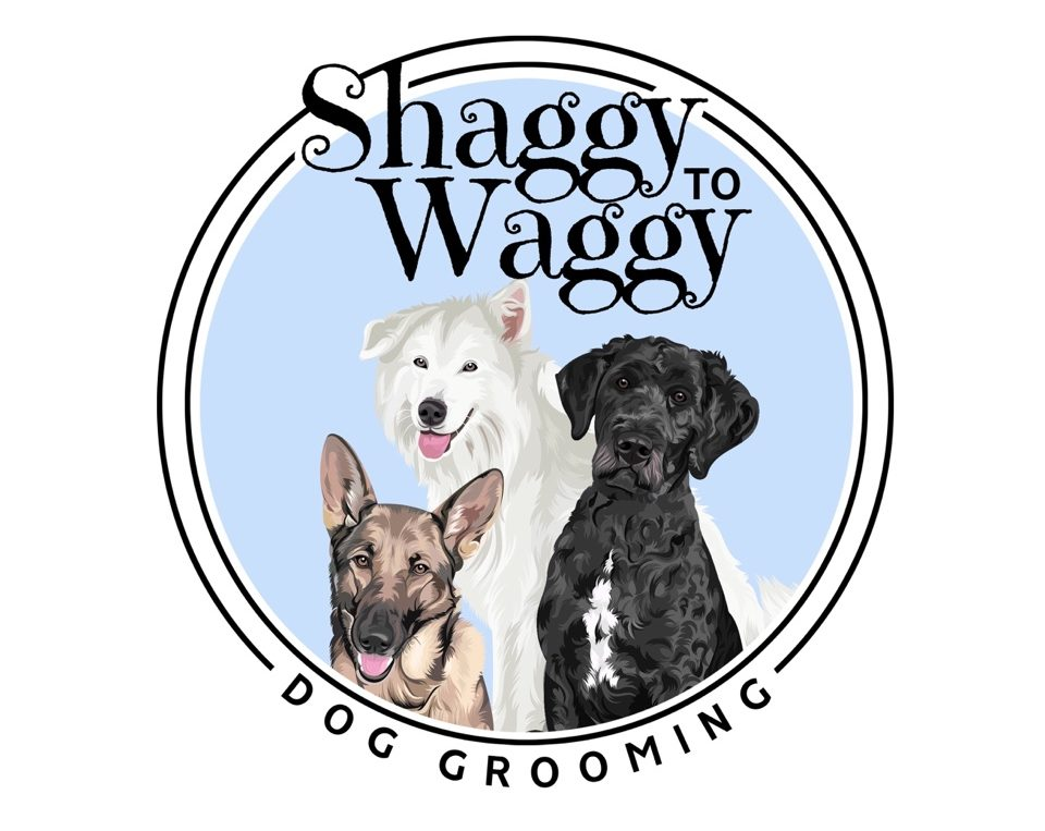 Shaggy to Waggy